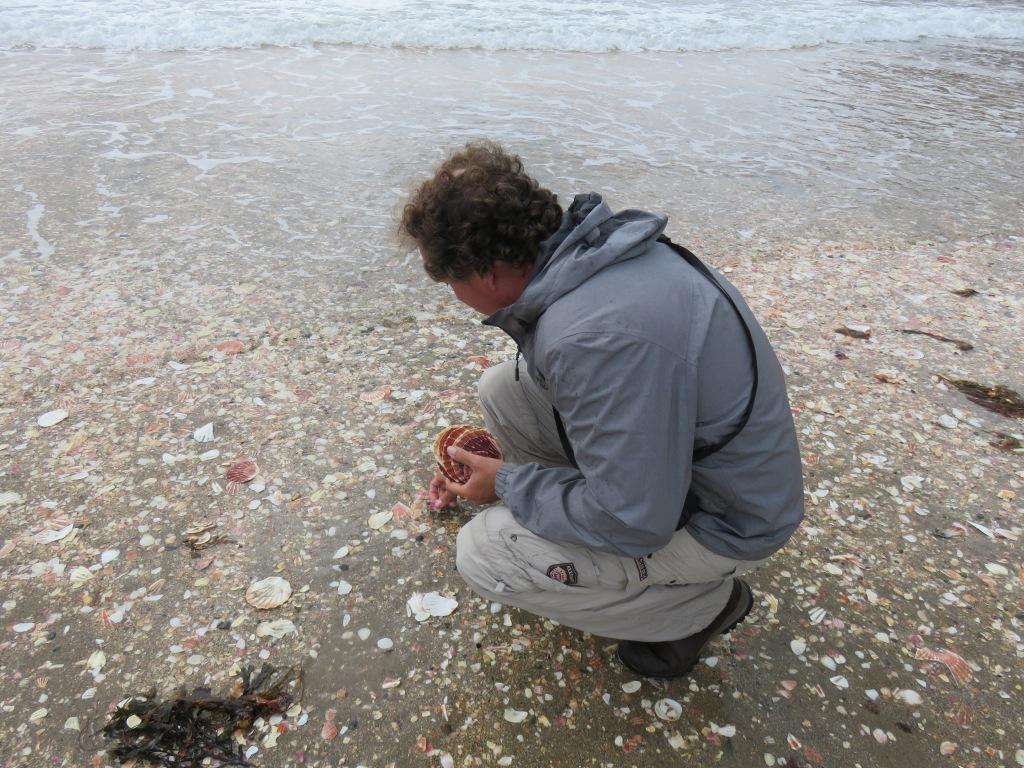 De man als eeuwige verzamelaar, strand bij Peel Castle, Isle of Man, augustus 2019